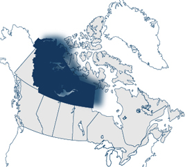 Northwest Territories Self-employed Business