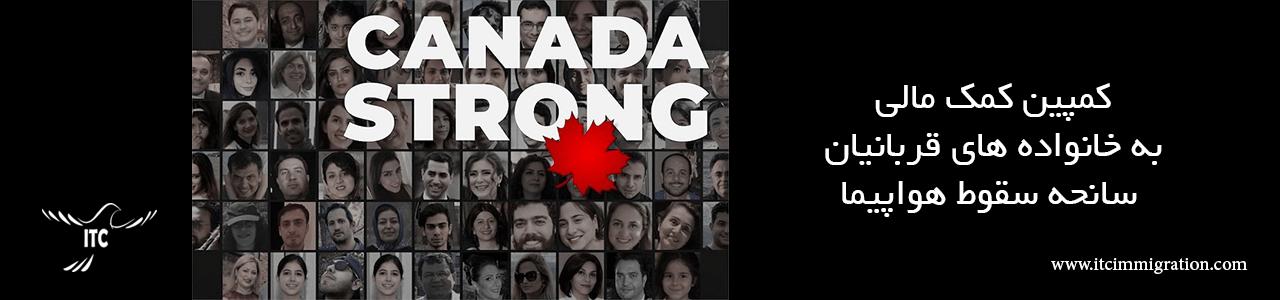 کمپین کمک مالی به خانواده های قربانیان سانحه سقوط هواپیما